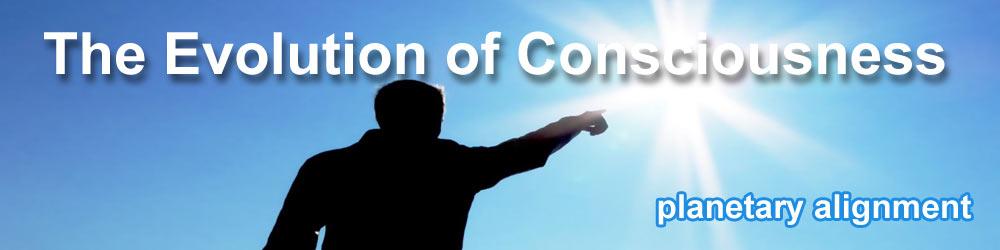 The Evolution of Consciousness movie